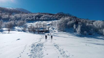 sullo sfondo l'alpe Bruno Piacentin al pian della Sella