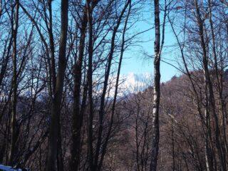 Alla Sella di Prerro, uno dei pochi punti dai quali si ha una visione, seppure parziale, del Monte Rosa.