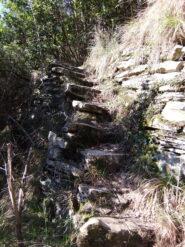 Tratto di scalinata tra le fasce sotto Canate