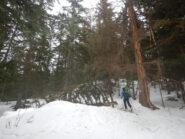 Sergio sul sentiero di salita riservato agli scialpinisti
