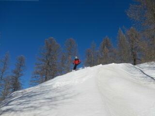 nel bosco neve portante nei tratti ben esposti al sole