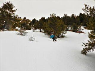 Bella neve e bell'ambiente anche più in basso