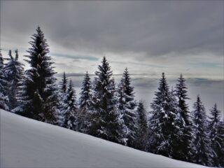 Il ns. Trentino...
