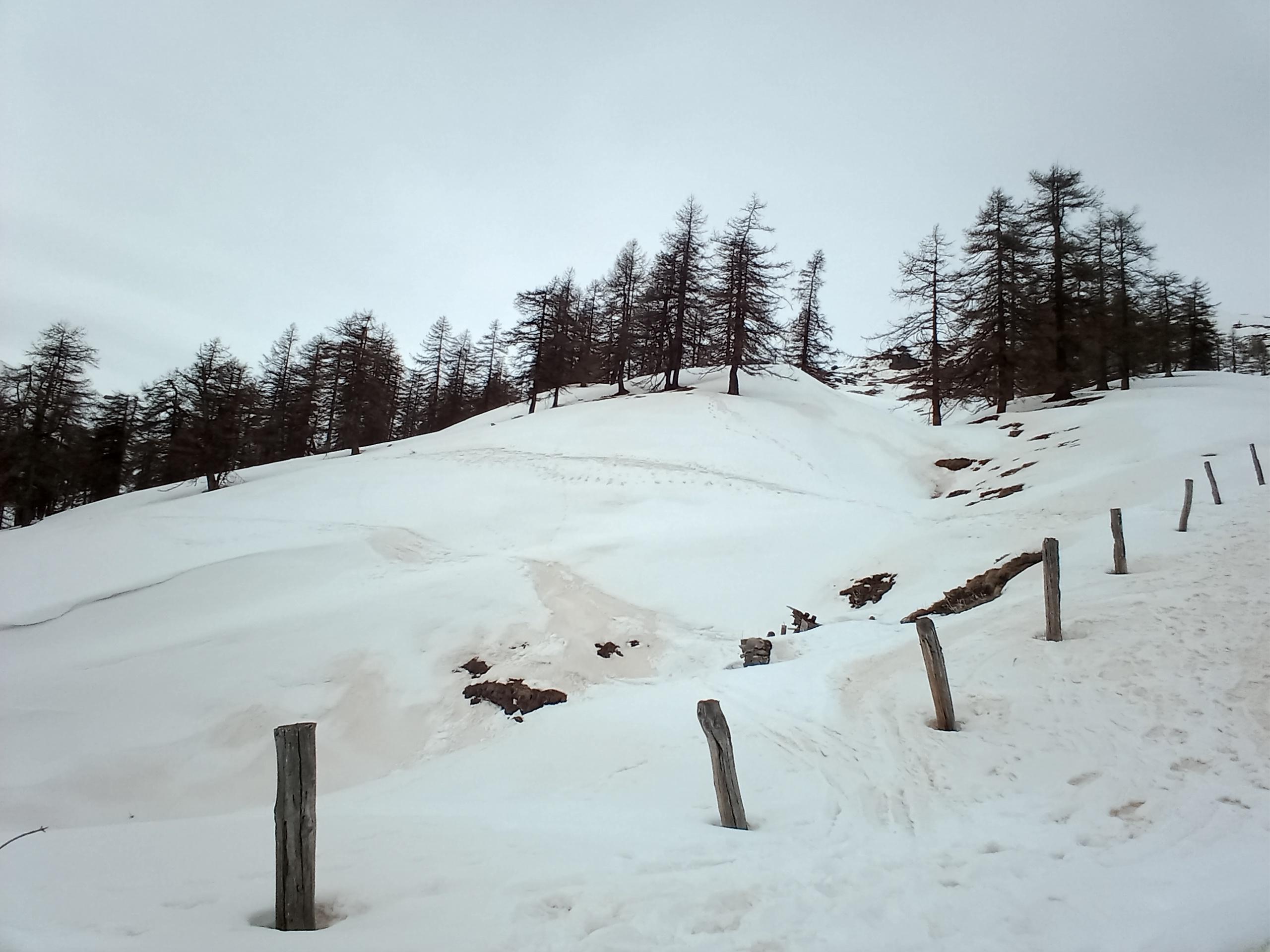 Traverso malagevole prima dell'Alpe. 2