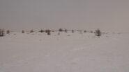 in alto neve portante