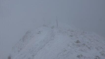 ci siamo resi conto di essere arrivati in cima solo all'ultimo istante....visibilità molto ridotta purtroppo