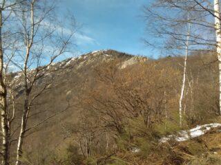 La cresta salendo