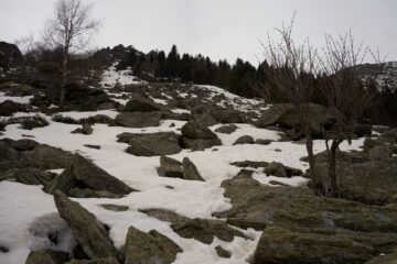 Parte meno piacevole della gita, tra i pietroni circondati da neve e buche