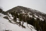 In vista del Monte Rognoso