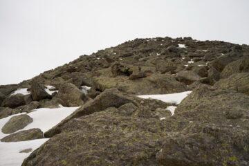 Pietraia che circonda la vetta del Monte Rognoso