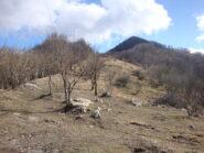 cresta verso il Monte Cremado