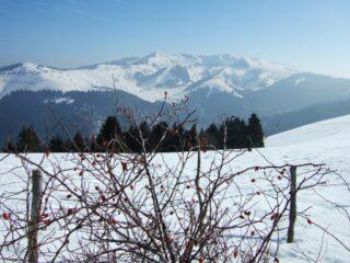 Monte Grappa visto dal Col Beretta