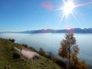 Spettacolare giornata autunnale, con chiara inversione termica sul solco della Valtellina.