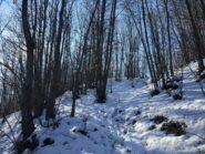 Salendo verso rocca Boudet