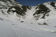 con la neve ben smollata comoda discesa del ripido canale