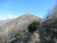 Tratto di cresta verso Monte Frascinello (m.1118)