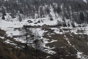 Ultimo tratto per raggiungere l'alpe di Viou, ormai fuori dal bosco