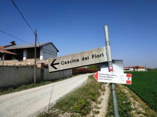 Nei pressi di Santhià, variante di ritorno.