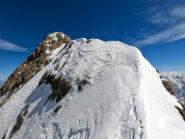 Monte Stella dal Colletto Coolidge