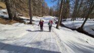 salendo lungo la pista forestale nel Bosco delle Navette