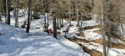 salendo lungo la stradina forestale, a quota 1830 m