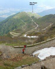 In discesa verso l'Alpe Foppa.