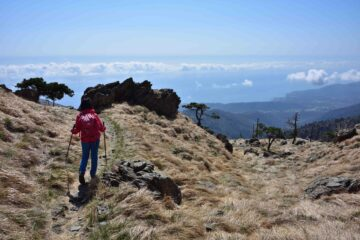 Scendendo verso il Passo della Gava - Veduta su Arenzano
