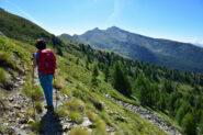 Sul sentiero n.10 (Sentiero Natura).