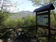 Sulla stradina del parco di Villa Ottolenghi. Sullo sfondo, Superga.