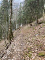 Sentiero CAI238