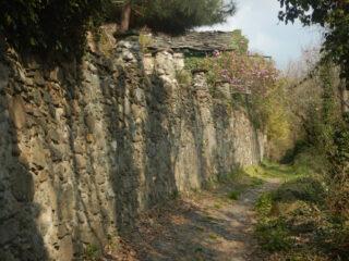 Borgata Calcinera
