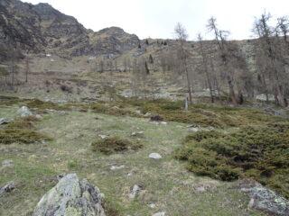 sopra le alpi le piane, il sentiero va verso destra