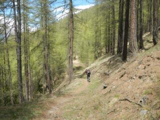 sentiero ben ciclabile