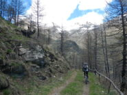 in leggera discesa verso l'Alpe Arcella