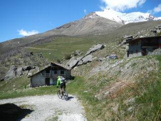 borgata Tour 175o m.