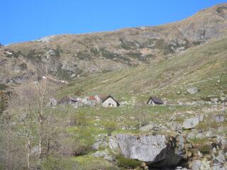 Grazioso Alpeggio Isola di sotto