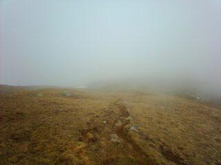 rientro nella nebbia...