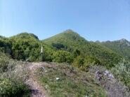 La cima vista dalla Colla delle Piastre.