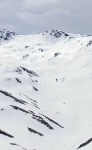 Curve di discesa. Neve bellissima