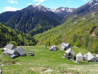 L'Alpe Cortina con sullo sfondo Mater, Margineta e Loccia di Peve.