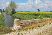 Il Ponte Crocetta sul Navillotto di Saluggia in una fioritura di colza