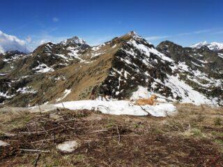 La cresta est vista dal Tovo.