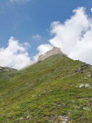 La cresta erbosa