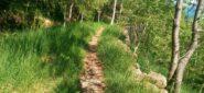 tratto di sentiero a sant'ignazio (cartello CAI)