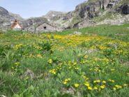 Il Bivacco Cecilia Genisio all'Alpe Vaillet