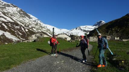 Grand Alpe