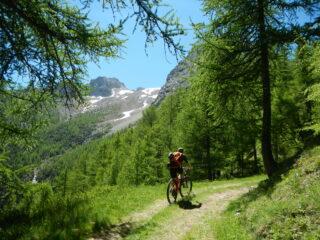 sulla sinistra il selvaggio vallone del Monte Gran Roc