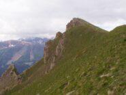 il ripido pendio erboso del Monte Bersaio