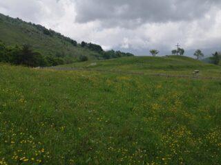 Verdi prati verso l'Alpe