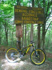 inizio foresta Barbottina